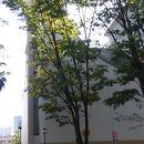 東京ユニオンチャーチ