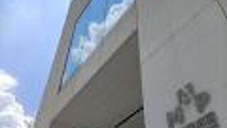 浦東美術館