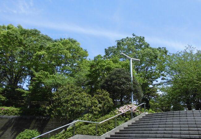 大坂台公園