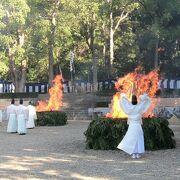 迫力のある火焚きと奉納される狂言