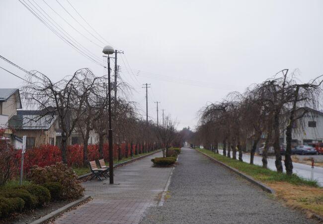 日中線記念自転車歩行者道
