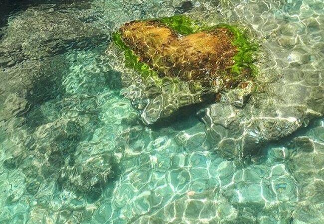 辰の島遊覧