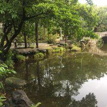 鯉魚池 (二二八和平公園内)