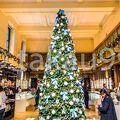 正門に近いショップにはもうクリスマスツリーが飾られていました。