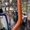 丁度いい具合にバス停があったのでバスで行き帰りは石神井公園を歩いて戻ります