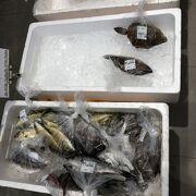 新鮮なお魚があります。