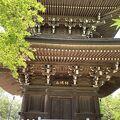 武蔵野三十三観音霊場の二番札所の道場寺です。道成寺とは違います。