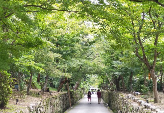 興聖寺(京都府宇治市)