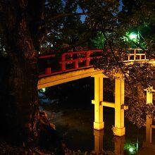 夕方の神橋はライトアップされ綺麗でした