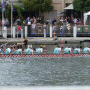 南半球最大の結構本格的なドラゴンボートレースです