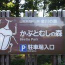 山梨県森林公園金川の森