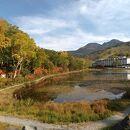 蓮池(長野県山ノ内町)
