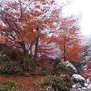 寂光院(愛知県犬山市)