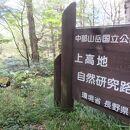 上高地自然研究路
