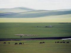 ハイラル草原