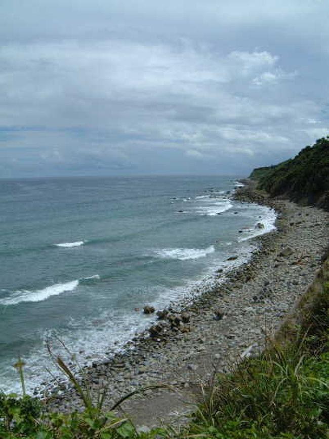 宮崎県宮崎市の青島から串間市の都井岬まで約90kmほどある長い海岸。<br />フェニックスや蘇鉄、ハイビスカス等の植物が南国気分にさせてくれます。<br />海の透明度もすばらしく青島や堀切峠、鵜戸神宮、都井岬、サンメッセ日南、<br />サボテンハーブ園などの名所もあるので天気の良い日はドライブが最高です!<br />もちろん海水浴場もサーファーが集まる所としても有名です。