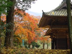 金比羅寺(愛媛)の秋