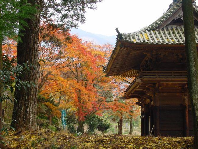 金比羅寺という小さなお寺の小さい秋を発見!<br />ひっそりしていて<br />落葉の音が聞こえてきそうでした。<br /><br /><br /><br />
