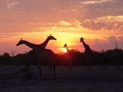 ボツワナの旅(2)・・旅いつまでも