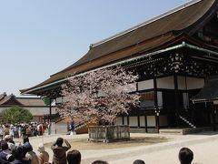 春の特別公開@京都御所☆2005年4月9日