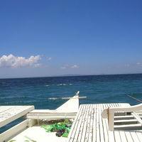 ジンベイザメ三昧 in Donsol (Philippine)