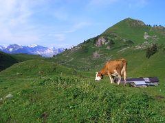 スイスドライブ&ハイキング【4】(シーニゲプラッテからフィルストハイキング編) 2004年7月