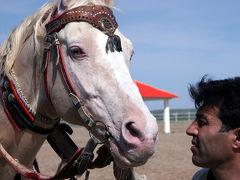 トルクメニスタンの旅 ?・・旅いつまでも
