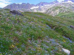スイスドライブ&ハイキング【3】(アンデルマットからグリンデルワルドドライブ編) 2004年7月