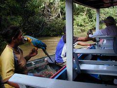 ブラジルの旅・・大河アマゾンとリオデジャネイロを訪ねて