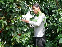 Nicaragua  ニカラグアって面白い(10/16) セルバ・ネグラ(Selva Negra)のコーヒー農園を訪ねて