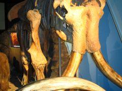 EXPO愛々 ロシア館☆マンモス骨格から宇宙開発まで幅広く・・
