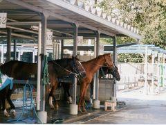 東武動物公園で乗馬に挑戦~♪
