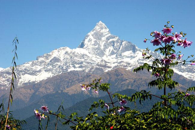 世界の最高峰エベレスト、8,000mの山々が連なるヒマラヤ山脈、景勝地・ポカラやナルガコット、サランコットの展望台からの眺め。世界遺産が3つもある古都・カトマンズの寺院などなど・・<br />更に、エヴェレストを目の前に見るヒマラヤ遊覧飛行など見所満載のネパールに行って来ました。ベストシーズンに入った乾期のヒマラヤ!天候に恵まれ美しい冠雪の姿を毎日満喫!・・イヤー素晴らしいネパール!新しい発見・驚きの連続!超お勧め!・・見るところがいっぱい!今回もまた新しい発見があった。やはり旅は楽しい・・!<br /><br /><br /><br />詳細は<br />http://yoshiokan.5.pro.tok2.com/<br />旅いつまでも・・★画像で見る旅行記<br /><br />をご覧下さい。