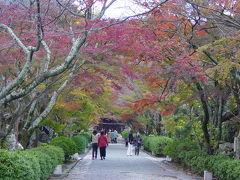紅葉を求めて・・・西教寺