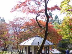 紅葉を求めて・・・鶏足寺