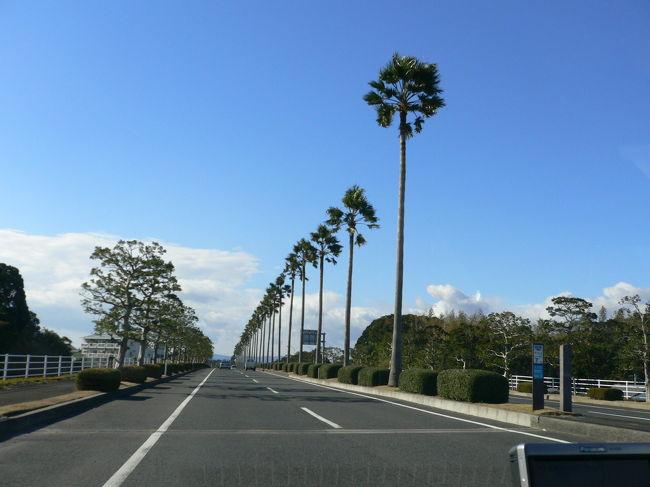 一泊二日で宮崎のシーガイアに行ってきました。<br />シェラトンのリゾートと聞いて、どれだけすばらしいのかと期待をしていきましたが「ここは海外リゾートか!」と思うばかりの素晴らしいところでした。