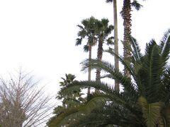韓国2005 済州島-4 ハル林公園・山房山・中文リゾートを巡る☆島西南部 タクシー観光