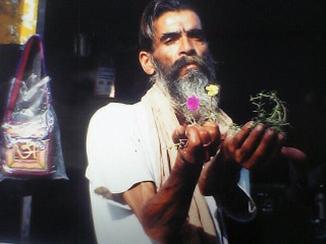 気付けば自分は「インドに行こう」と、何年も思ってきた。 <br /><br /><br />よくインドに行けば価値観が変わるとか、精神的に強くなるだとか、あとは悩みを抱えた人は吸いよせられるだとか、インドは選ばれた人しかいけないだとか・・不思議な話を聞いていた。 <br /><br /><br />なんとなく先の見えた人生、窮屈な社会や、つまんないニュースに嫌気もさしていた。 <br /><br /><br />インドに行きたいと思ってはいたが、バイトや大学のゼミ、友人との付き合いや、それに当時付き合ってた彼女のこと、バンド活動など色んなことを理由にしては、なかなか足を踏み出せずにいた。 <br /><br /><br /><br />そうして月日は流れ、 <br /><br />大学4年。 <br /><br />就職活動も終えた。 <br /><br />でもなんだか物足りない。 <br /><br /><br />「俺はもっとできるはずだろ・・」 <br /><br /><br />常にそんなことを思っていたのかも知れない。 <br /><br />すべてに欲求不満でいたのかもしれない。 <br /><br /><br />もう大学4年。学生としてはこれが最後のチャンスだ・・ <br /><br /><br /><br />やるっきゃねぇだろ・・・(゚゚`) <br /><br /><br />今まで、旅の情報はたくさん仕入れてきた。あとは、勇気だけが友達さ〜。 <br /><br /><br /><br />最初は両親にも反対された。 <br /><br />そりゃそうだ。今まで、なんだかんだ親に頼りっぱなしで、何一つ自分の力でやってねぇもん。 <br /><br /><br />どれだけ具体的に親に説明できるか。どんなルートで、どんな生活のプランなのか。 <br /><br /><br />もちろん、カネはあんまりねぇだよ。それでもいかに旅していくか。 <br /><br /><br />一日・・だいたい千円くらいで、一ヶ月半くらいだと・・4万五千円ぐらい!! <br /><br />なんかあった時のため、多めに6万くらいで!! <br /><br /><br />・・やっぱ俺けっこうアバウトな性格だ(笑 <br /><br /><br /><br /><br />学校の前期試験も終わり、出発の日はあっという間にやってきた。 <br /><br />なんとか、旅中の連絡の取り方や、緊急事態の対処法など、親に説明し納得してもらうことができた。 <br /><br />バックパックに、荷物は全部で6キロぐらいか。 <br /><br />極力少なくした。荷物重いと、移動するのが大変だし。。 <br /><br /><br />駅まで、オヤジに車で送ってもらった。 <br /><br /><br /><br />そして別れ際、いつもはそんなに話さないオヤジが、ポケットから <br /><br />一万円を取り出し、渡してくれた。 <br /><br /><br /><br />「ありがとう・・行ってきます。 <br /><br /><br />絶対、生きて帰ってきます!!」 <br /><br /><br /><br /><br />ほんとにうれしかった。なんだかんだ、また親に助けてもらう形にはなったけど、ホントにありがたさが分かった気がする。 <br /><br /><br />そして成田空港。 <br />エアインディアはひどかった。 <br /><br /><br />天井から、水滴??が垂れてくるし、そこらじゅうにガムテープ貼ってあるし。。 <br /><br /><br />飛行機が落ちるんじゃねぇかと心配になるが。。 <br /><br /><br />インドに近づくにつれて、 <br /><br />緊張で胸がどきどきする。 <br /><br /><br />飛行機がインディラガンジー空港についた。 <br /><br />気合をいれて、深夜のインドに俺は降り立った。 <br /><br /><br />熱気がやべぇ。。。 <br />ゲートには、 <br />タクシーだかホテルだかの客引きが100人くらいいる。 <br /><br /><br />あいつら・・ <br /><br /><br /><br />ゾンビだろ・・(´Д`;) <br /><br /><br />空港内には、牛やらウ○コちゃんやら、ハエとかヤギとかイヌとかウン○ちゃんやらいっぱいいるし。。 <br /><br /><br />あっけにとられていると、 <br /><br /><br /><br />日本人から声をかけられた。 <b