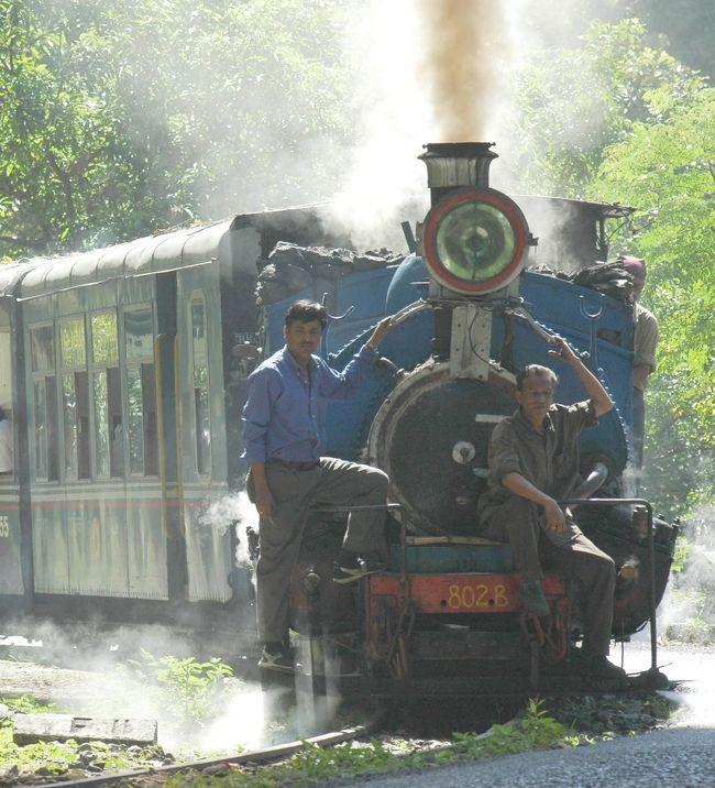 【ダージリン・ヒマラヤ鉄道全行程写真と解説】に載せきれなかった写真をこちらに集め、さらに詳しく説明いたします。<br />なお、ダージリンの街を詳しく知りたい方は【ダージリンの街並み散歩】をごらんください。