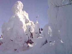 湯けむりの里でスキー,樹氷・・・もちろん温泉も