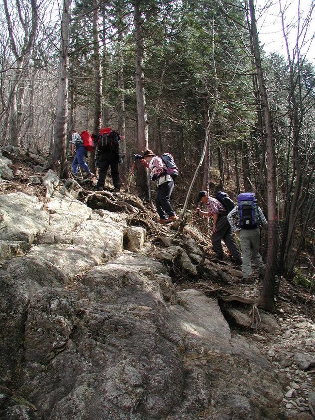 春まだ浅い日光鳴虫山に登る。<br />今回は日光二荒山神社の神橋が特別公開していると聞いて、鳴虫山に登る前に神橋を見学するため、通常の登山コースから逆のコースを選び、神橋・憾満ヶ淵を経て鳴虫山に登る計画をたてる。<br /><br />また、この時期には珍しく暖かい一日で登山者も単独の登山者に三名ほどいましたが、山頂での昼食に1時間半ほどいたのですが誰にも会わず、鳴虫山の貸し切り状態でした。<br /><br />穏やかな一日をのんびり楽しく登ってきました。<br /><br /><br />