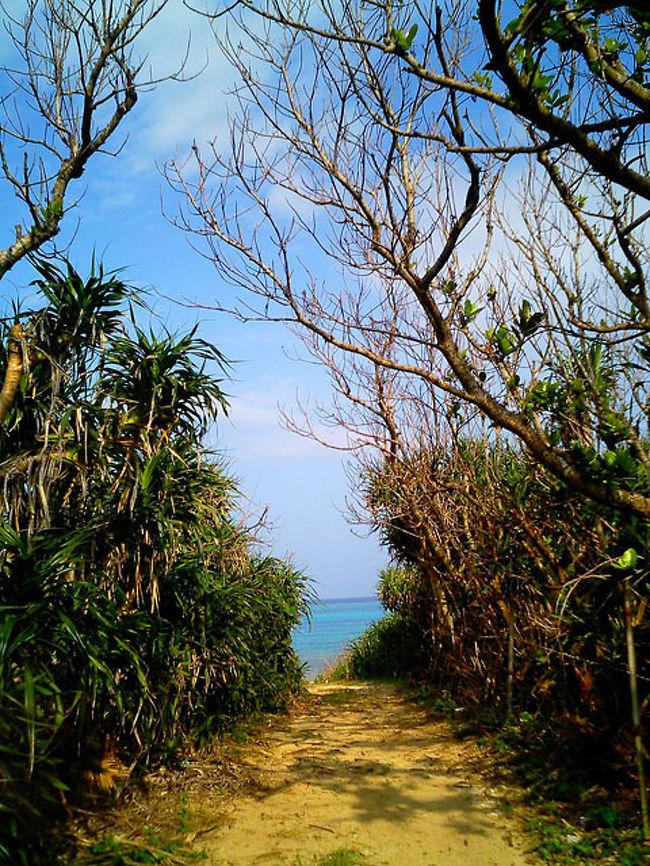 衝動的に沖縄黒島へ行きたくなった。<br />乗り継ぎ乗り継ぎで疲れたのである....