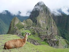 2006年ペルー・ボリビア・チリ旅行 4日目 マチュピチュ ? -MACHU PICCHU-