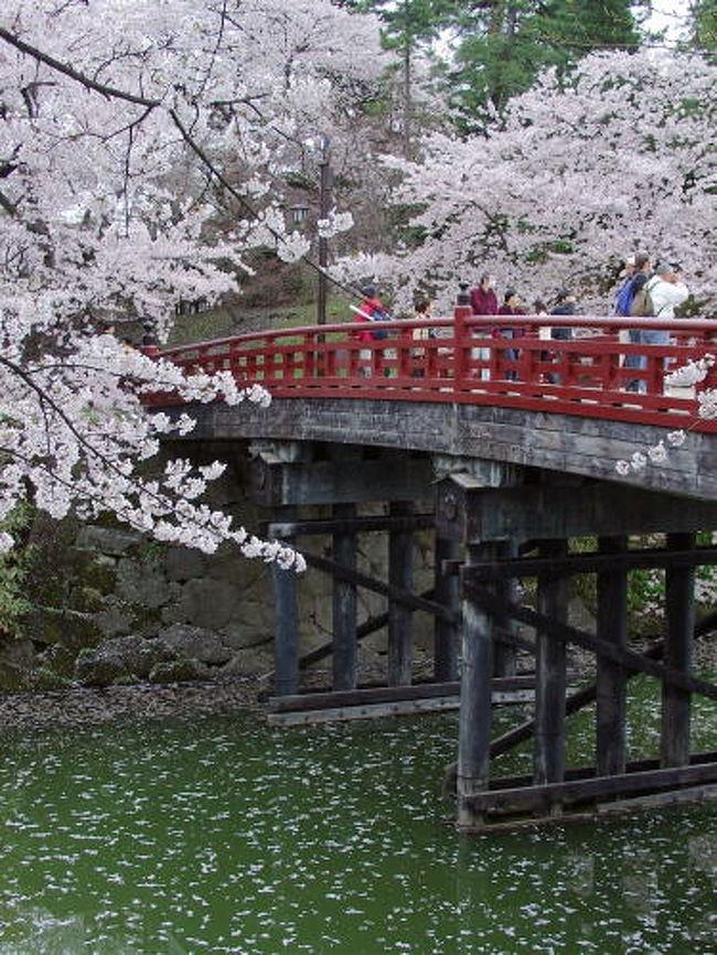 函館から青函トンネルを列車で抜け、青森からレンタカーに乗りました。弘前城は桜祭の終り頃で、少し散り始めていましたがとても美しかったです。