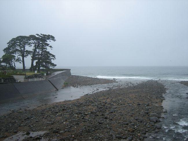 太平洋に面した伊豆は片瀬温泉に行きました。部屋から海が一望できる宿、天気さえ良ければ部屋つきの露天風呂で日の出を見ながらゆっくり・・・なんてことができるはずでしたが、当日はあいにくの雨、そして風。荒れ模様の海が一晩中どどどどどどとすごい波音を立ててうなり、野天風呂では雨に打たれ、それはそれで不思議に楽しく過ごしました。