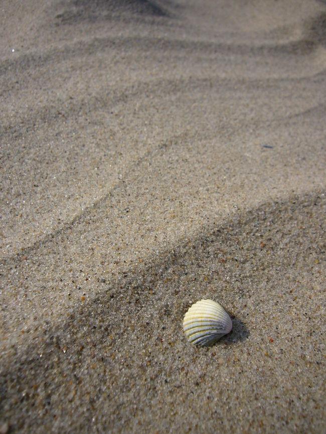 ドイツ人の愛する海辺のリゾート、バルト海に浮かぶ「リューゲン島 Insel Ruegen」に行ってまいりました♪<br /><br />ドイツの一番右上に位置するリューゲンは、日本人には知られていないですがドイツ人には大人気の観光&リゾート地なのです。なぜならそこには白砂の海辺と豊かな自然があるのですから...!