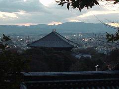 奈良公園と若草山焼き