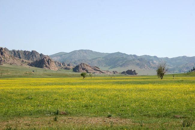 モンゴル航空で首都ウランバ-トルへ直行便で5hr30m、時差はなし! 旭鷲山や旭天鵬、朝青龍や白鵬の故国モンゴルへ行ってきました。今年は記念すべきモンゴル建国800年の年、ナーダム祭や各種イベントも用意され、今年に限り日本からのビザは免除!モンゴルの大草原の風に吹かれて、草原いっぱいに咲き競う美しい野花を堪能!ドウガノハットやテレルジ国立公園はとてもとても美しい期待どうりの素晴らしい処であった。今回もまた新しい感動があった。やはり旅は楽しい・・!<br /><br /><br /><br />詳細は<br />http://yoshiokan.5.pro.tok2.com/<br />旅いつまでも・・★画像で見る旅行記<br /><br />をご覧下さい。