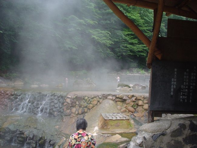 2年前の夏休みに三重から茨城県をまわり日光方面からこの六合村に寄った。<br />「道の駅:六合」に隣接する'応徳温泉'は第一印象、<br />「ボロいなあ」<br />入ると、「せまいなあ、きたないなあ。でも鄙びた感じでゆっくりできる」。<br />お湯は、それまで知っていたどの湯より効き目のあるものだった。<br />以来、「もう一度入ってみたい」温泉でした。<br /><br />今回、草津温泉に入った後なので、前回ほど感動はなかった。<br />しかも湯船は新規改装されていて、鄙びた感じが減少。<br />湯の花は2年前はいっぱい出ており「キタナイナア」とまで思わせたくらいだが、今回は非常に少なかった。<br />源泉度が低下したのではないか?<br /><br />まあ、ともあれ、休憩室は田舎の公民館のようで昔と変わらず、一日中でもゴロゴロゆっくりできる。<br />やっぱり、日本で一番の湯、と小生は思うのであります。<br />(パートナーに言わせれば、それほどでもないそうな)<br />(こうしたことは、往々主観的なものなので、アシカラズ)<br />