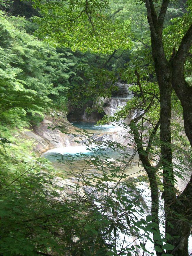 山梨の西沢渓谷の「七ツ釜五段の滝」を観に行ってきました。西沢渓谷は緑も渓流も美しく、せせらぎや鳥の鳴き声なども耳にやさしく、人もそれほど多くないので、のんびりと安らげるところでした。是非、又、行きたいです。<br /><br />またまた母と二人でいってきました。今回は母のリクエスト。実は私は、JAFの情報誌に掲載されていた日帰りドライブ・プランの特集で此処を知り、2003年の夏に一度来ました。その時のことを「とっても良かったよ」と母に話したのを覚えていたらしく、三年越しで行ってみる事にしました。マイペースに相変わらずの遅い出発。梅雨の合間、天気を気にしながら、国道299を通って秩父へ。国道140を山梨方面に向かうと、どんどん曇り空になって雨が振り出し、雁坂トンネルの手前ではかなりの雨に(T_T) 「山をこえると天気は変わる!?」と願いつつ雁坂トンネルへ。通行料は普通車で¥710。ちょっと高すぎ^^; そのおかげか、交通量は少なめ。すいすい行けます(^^)v 「通行量が少なく採算とれない→値段を落とせない」という悪循環を感じられる。両県の発展と交流の為にも、¥500以内を目指してもらいたいものです。<br /><br />雁坂トンネルを抜けると、曇り空ながら、天気はまだもちこえていました。ラッキー!\(^o^)/ 西沢渓谷はトンネルを抜けると、もうすぐそこです。イメージ的にはいくつかのカーブを、くぅ〜るっ(カーブを曲がっていく擬態音)、くぅ〜るっとすると(ちなみに2個じゃありませんん。)、左曲がりのカーブの終り位のところに、突然入り口が現れます。道の左側に看板もあるのですが、カーブなので、見にくいです。【注:埼玉側からのケースです。】<br /><br />入り口を入ると右側に食堂やお土産屋さんが数件立ち並んでいます。そこの有料(?)駐車場もあります。無料駐車場は、入り口を入って直ぐ、左にある下り坂の道を下りたところです。収容台数は50台位だと思います。<br /><br />到着は11:00頃。無料駐車場に車を停め、準備開始。虫除けスプレー、帽子、ペットボトルを持つ。無料駐車場への道をあがった真ん前にあるお店でお昼に「山菜おこわ」と「よもぎ餅」各一個購入。結構高かった気がするけど、天然なんだそーだ。ここでトイレを借りて出発。小腹がすきはじめ、早速よもぎ餅を食べる私(笑)<br /><br />西沢渓谷は「お散歩」というには、ちょっとハードです。距離と起伏があります。ハイキングになるんでしょうか。軽装で大丈夫ですが、動きやすい服装や靴が良いでしょう。特に渓流沿いは岩場もあり、かなりの階段を登る所もあります。ミュールやサンダルで来ている人をよく見ます。今回も若いカップの女性がそうでしたが、ちょっと大変そうでした。場所的には素敵なデート・スポットだと思いますが、気遣い的に疑問を感じる所です。愛があれば問題ないかもしれませんが、御注意を♪ 一方、小さなお子さんを連れてハイクされている方も結構いらっしゃいます。元気に歩いていて、私より早かったりします。TPOとペースを守れば、わりと広範囲の人が楽しめるコースだと思います。<br /><br />「七ツ釜五段の滝」まで約一時間と思っていたのですが、勘違いでした。到着まで約2時間。道中、写真をとる人達やウェットスーツを着て渓流スライダー(?)を楽しむ人たちを見ました。途中、少し雨が降ってきたりもしたのですが、大降りになることもなく、もちなおしてくれました。西沢渓谷のポスターでよく使われている景色と思われる場所があり、そこでお昼にしました。いつも何も持たず出かけてしまう私達。初めて、ハイキングの途中でお昼を食べる事ができました。嬉しい(^^)v 欲を言えば、今度はレジャーシートも持っていこっ♪ <br /><br />このコースは一周できるようになっています。一周約4時間位だと思います。前回、一周した時、後半は林の中風のコースだったので、私達は渓流沿いの同じコースを帰る事にしました。渓流沿いより林の方が、どちらかというと楽だった気がします。帰りに私達が折り返した時にいた(一周されて戻ってきた)人達に合いました。今思うと、一周した方が良かったかも。<br /><br />車に戻ると、もう16時頃。小腹が減っていたのですが、帰路途中でなんか食べようと車を出しました。お腹がすいて途中にあった道の駅によりましたが、スナック系の食べ物がなく、アイスクリームを食べました。おこわを買ったお店でうどんでも食べとけばよかったな。。。残念(T_T) <br /><br />雁坂トンネル通行料 普通車片道 ¥710<br />http://www.nns.ne.jp/ass/tollgate/karisaka.h